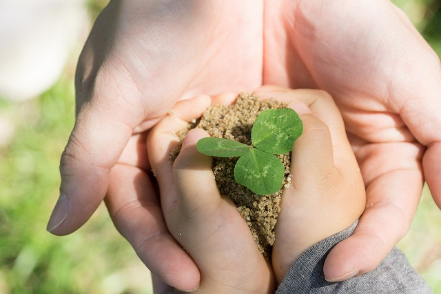 美と健康と環境を謳歌する