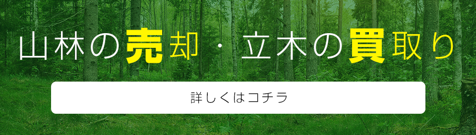 0:山林の売却・立木の買取り